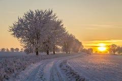 Solnedgång i vinterlandskap i dåliga Frankenhausen Royaltyfri Bild