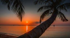 Solnedgång Koh Phangan Thailand Arkivbild