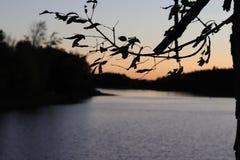 Solnedgång Lake royaltyfri foto