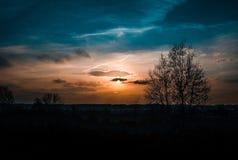 Solnedgång med blå apelsin- och laxhimmel med solen och moln och tre och berg royaltyfria bilder