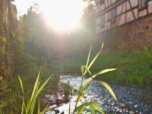 Solnedgång med blad av gras i förgrund och det lilla gammal huset för bäck och i bakgrund Arkivfoton
