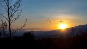 Solnedgång med en agaveblomma royaltyfri bild