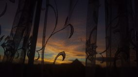 Solnedgång med en skillnad arkivbild