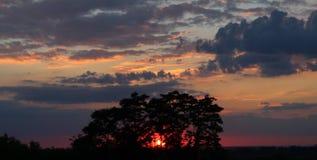 Solnedgång med färgrik himmel Royaltyfria Bilder