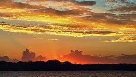 Solnedgång med högt guld- glöd och karmosinröd highliting och silhouet Royaltyfri Foto