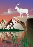 Solnedgång med hjortar och berg Arkivbilder