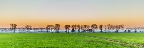 Solnedgång med lantligt holländskt område arkivfoto