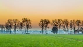Solnedgång med lantligt holländskt område arkivfoton