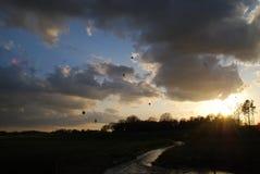Solnedgång med luftbaloons Royaltyfri Foto