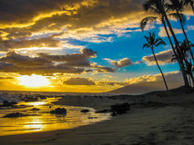 solnedgång med palmträd, ö av Maui, Hawaii Royaltyfri Bild