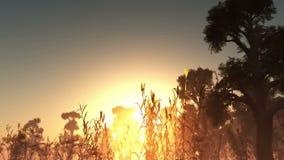 Solnedgång med träd i dimma stock illustrationer
