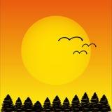 Solnedgång med träd och fåglar Vektor Illustrationer