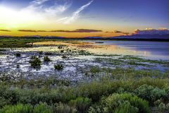 Solnedgång med träsk och Sangre de Cristo berg Arkivfoton