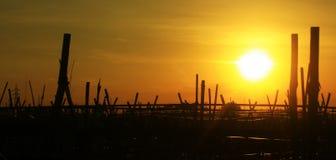 Solnedgång min stad Royaltyfri Foto