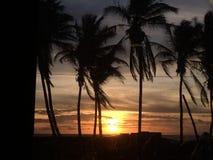 Solnedgång nära en strand royaltyfri bild