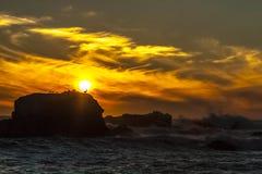 Solnedgång och fåglar Royaltyfria Bilder