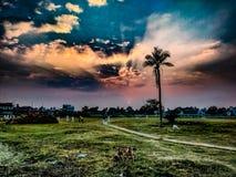 Solnedgång och guld- molnig himmel royaltyfri fotografi