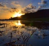 Solnedgång och pöl Royaltyfria Bilder