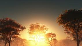Solnedgång och skog i dimma royaltyfri illustrationer