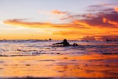 Solnedgång och surfare Royaltyfria Bilder