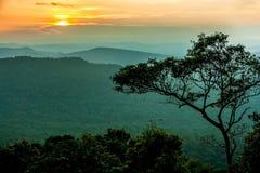 Solnedgång på berget royaltyfria foton