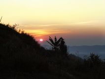 Solnedgång på berget bak bananträdet Arkivbild