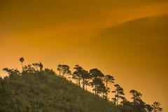 Solnedgång på bergnationalparken Royaltyfri Foto