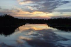 Solnedgång på blå cypressnaturvårdsområde Royaltyfria Foton