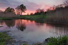 Solnedgång på dammet Royaltyfria Foton