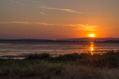 Solnedgång på Danube River på Moldavien Noua Royaltyfria Foton