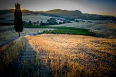 Solnedgång på de Tuscan kullarna royaltyfri fotografi
