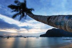 Solnedgång på den Corong Corong stranden, Palawan, Filippinerna Fotografering för Bildbyråer
