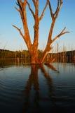 Solnedgång på den döda sjön Royaltyfri Bild