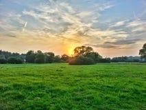 Solnedgång på den gröna ängen Arkivfoton