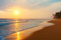 Solnedgång på den härliga stranden av Indiska oceanen Sri Lanka Arkivfoton