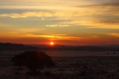 Solnedgång på den Klein Aus utsikten Arkivbild