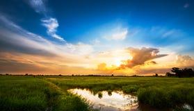 Solnedgång på den lantliga platsen Royaltyfri Fotografi