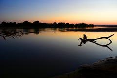 Solnedgång på den Luangwa floden Södra luangwanationalpark zambia arkivbilder