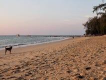 Solnedgång på den Nai Yang stranden, Phuket, Thailand Arkivfoto