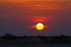 Solnedgång på den Nxai pannan NP Arkivfoton