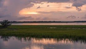 Solnedgång på den Pinckney ön i South Carolina fotografering för bildbyråer
