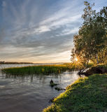 Solnedgång på den Ruza floden royaltyfri fotografi
