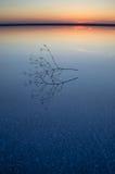 Solnedgång på den salta sjön av Elton Fotografering för Bildbyråer