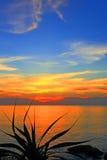 Solnedgång på den tropiska ön Arkivbild
