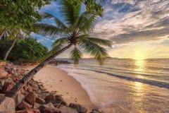 Solnedgång på den tropiska stranden arkivbilder