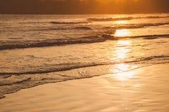 Solnedgång på den tropiska stranden i Sri Lanka - guld- färg vinkar havsvatten som är upplyst vid solen royaltyfri fotografi
