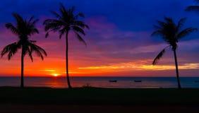 Solnedgång på den Vietnam kusten Royaltyfria Foton