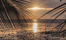 Solnedgång på det Andaman havet, Trang landskap, Thailand Arkivfoton