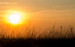 Solnedgång på det jordbruks- fältet Royaltyfria Bilder