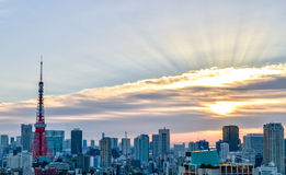 Solnedgång på det tokyo tornet i Japan Royaltyfria Bilder
